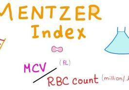 mentzer index