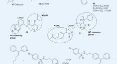ulcerogenic drugs