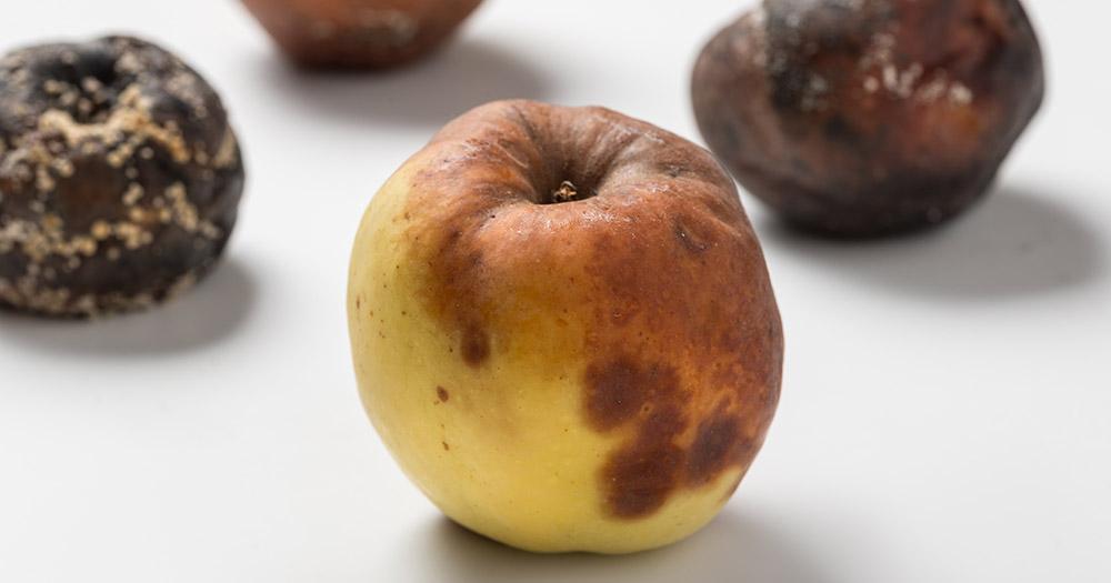 Những nguyên nhân khiến rau, củ, quả hữu cơ dễ hỏng